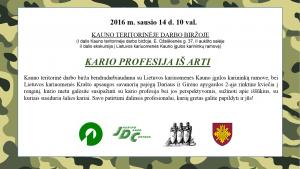 Kario profesija (2)
