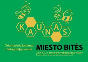 Miesto_bites